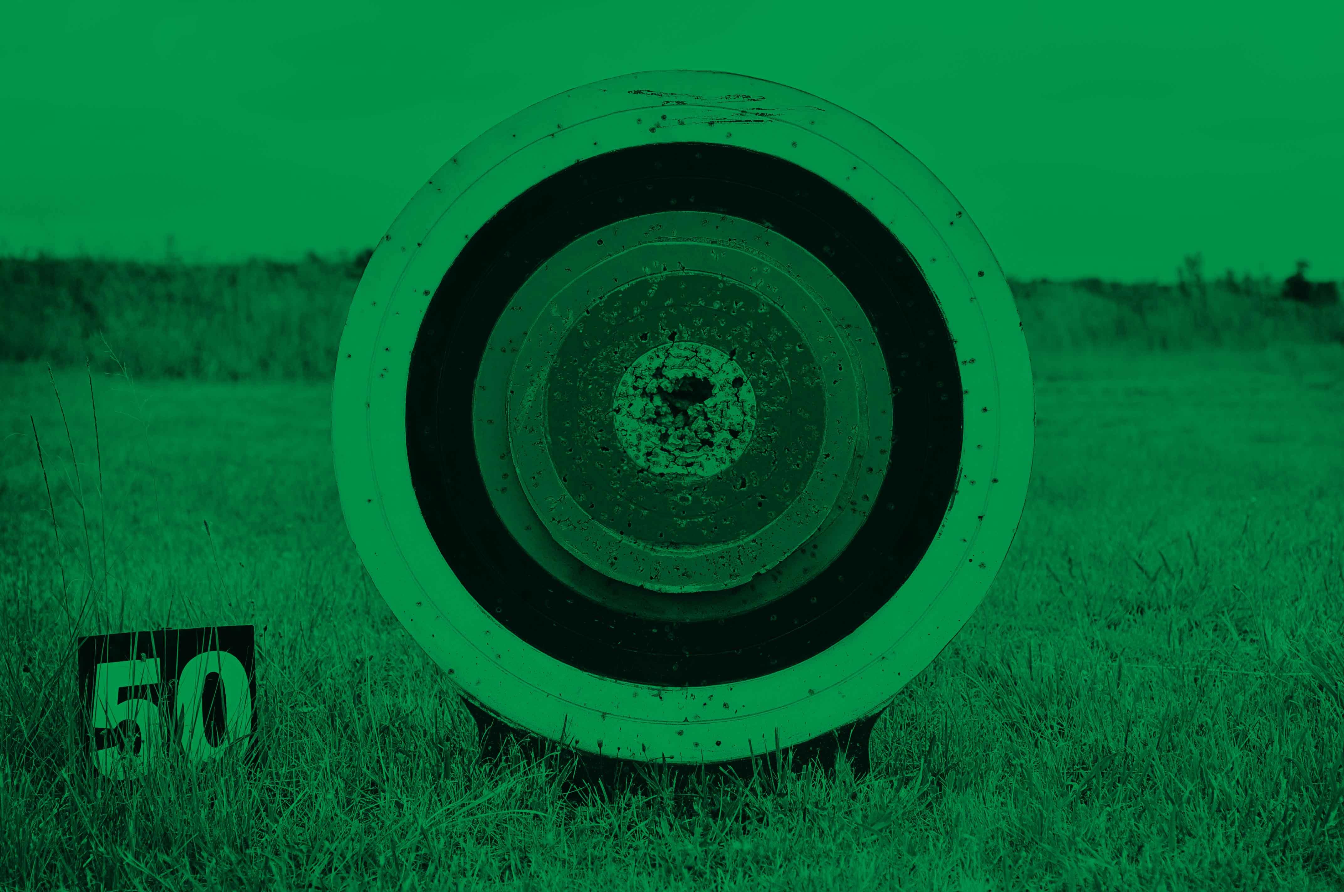 Target_in_Field_green.jpg